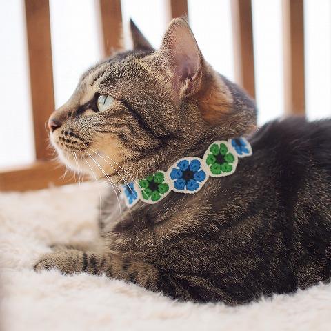 モチーフ編みの首輪をつけているキジトラ猫