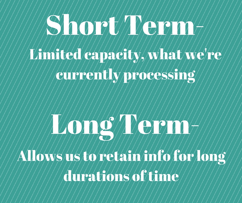 the distinct difference between short term and long term memory Abstract the camp-dependent protein kinase (pka) is known to play a critical role in both transcription-independent short-term or intermediate-term memory and transcription-dependent long-term memory (ltm.