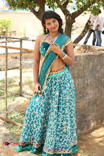 Actress Teja Reddy  Pictures in Blue Saree  0184.JPG