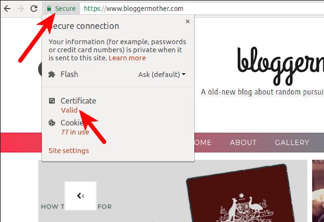 Blogger SSL Certificate