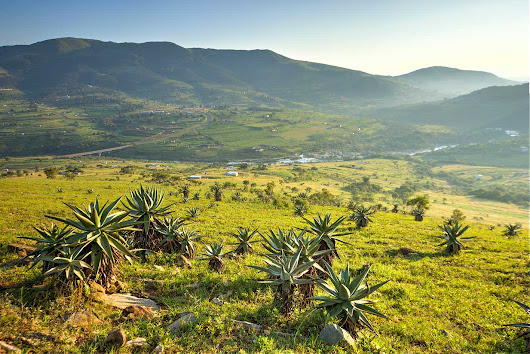 Transform Your Life At Swaziland, Southern Africa