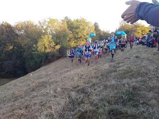 https://www.lafilleauxbasketsroses.com/2018/11/alesia-trail-vercingetorix-par-cyril.html