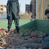 See ISIS use toddler to execute prisoner in Syria ...photo