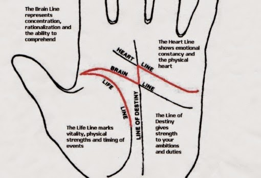 Palmistry Guide: Line of Life and its variations (part 1)