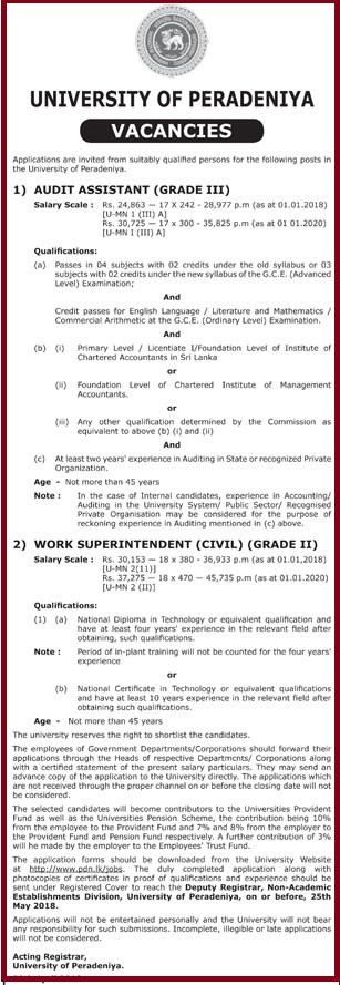 Audit Assistant / Work Superintendent