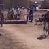 Vídeos de las carreras del ciclocross de Fresno de Rodilla 2017