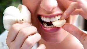 Gambar Obat sipilis dengan bahan alami bawang putih