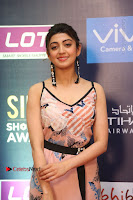 Actress Pranitha Subhash Pos in Short Dress at SIIMA Short Film Awards 2017 .COM 0098.JPG