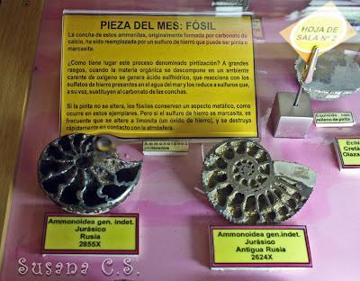 Museo Geominero - Madrid