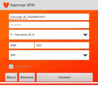 Hammer free browsing settings
