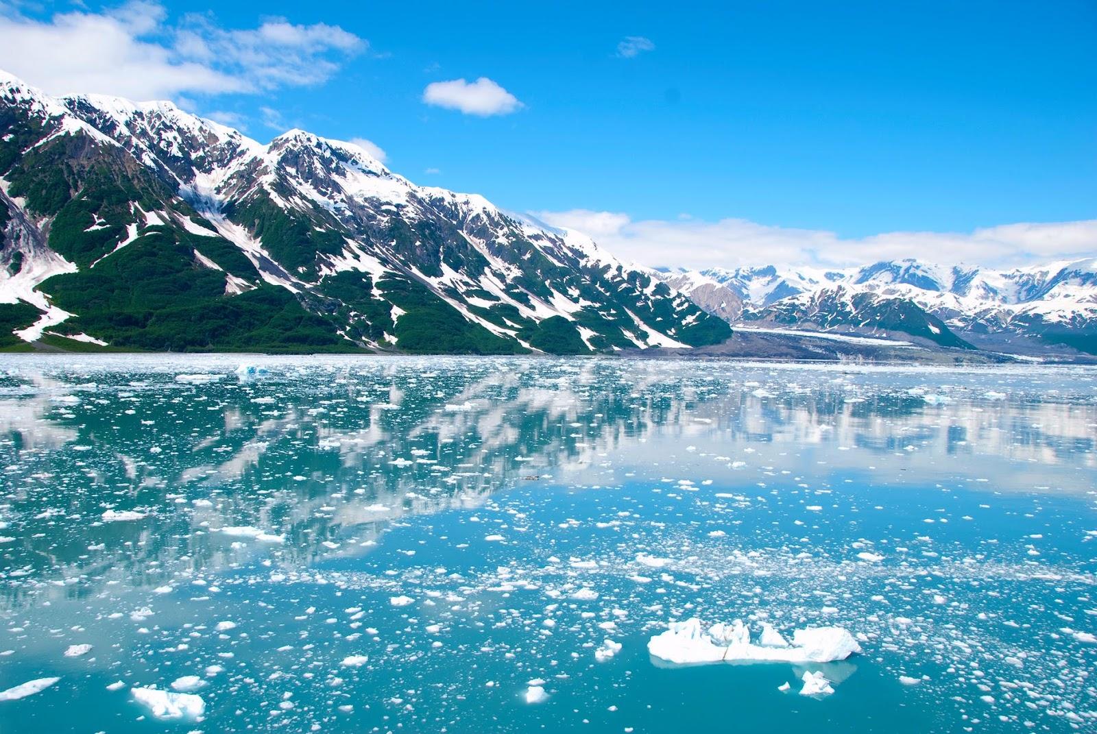 Born a Dragon, Raised a Tiger: Looking for Alaska: Visiting