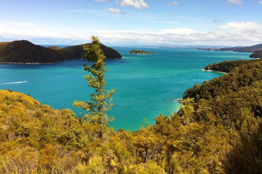 Abel Tasman National Park, Selandia Baru