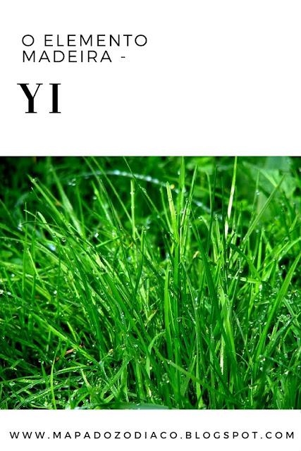 nascido no dia da madeira negativa yi astrologia chinesa