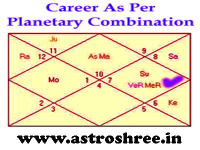 career and 10th house, planetary combinations and career in astrology