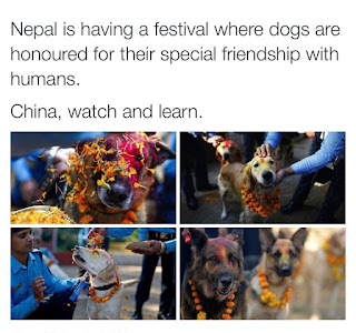 dogs are respected in nepal