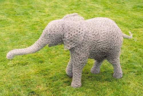 03-Elephant-Baby-Barry-Sykes-Sculptures-of-Animals-in-Wire-www-designstack-co