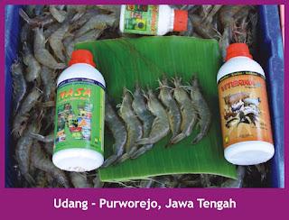 http://agenpupuknasa1.blogspot.com/2017/05/agen-pupuk-tambak-viterna-plus-di-pulau.html