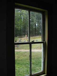 Looking out the window at the cemetery of the Missionary Baptist Church.
