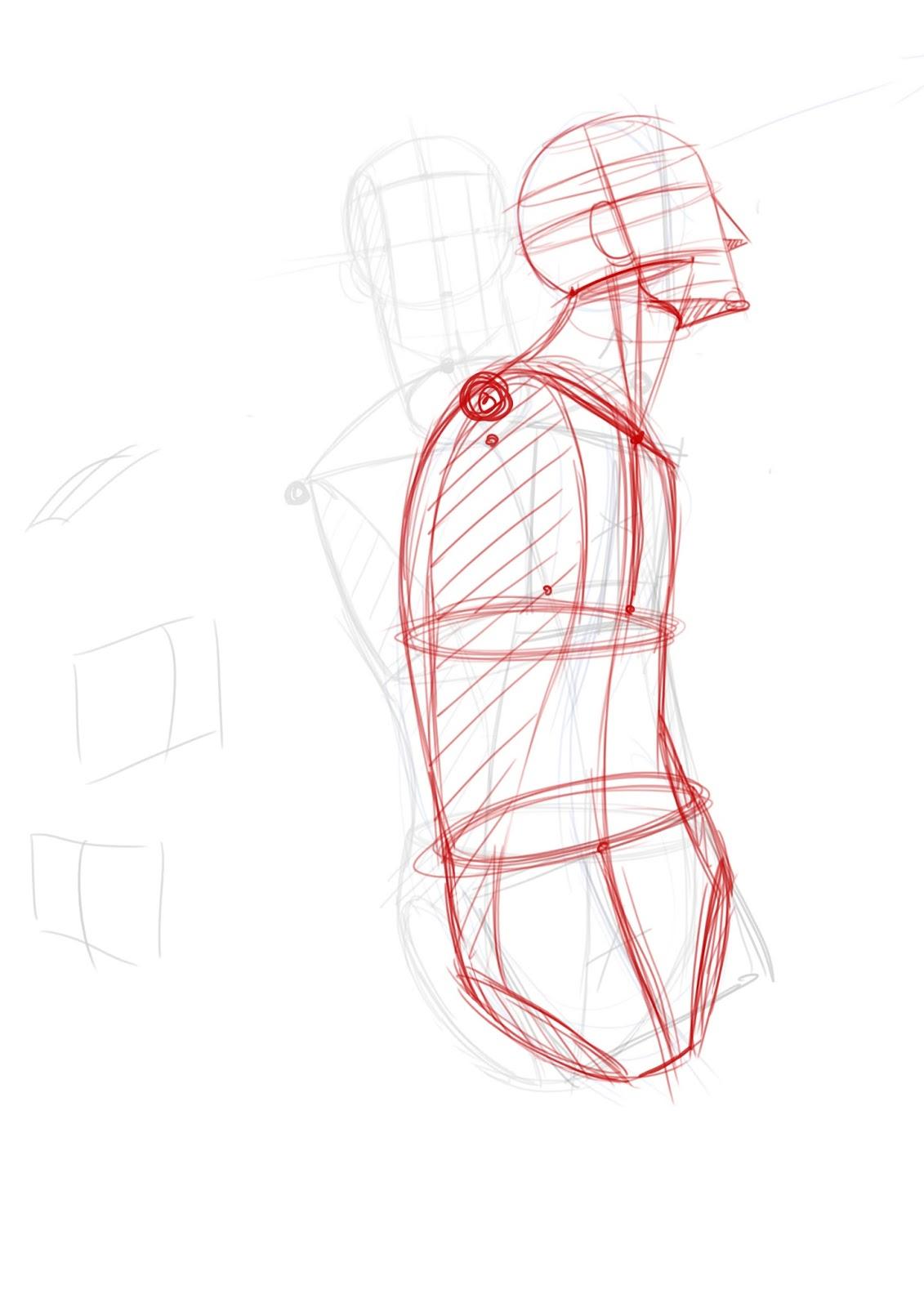 Frame anatomynews