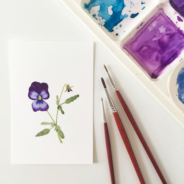 watercolor, daily painting, botanical painting, violas, Anne Butera, My Giant Strawberry