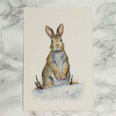 Rabbit watercolour sketch