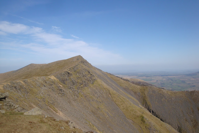 A bit further on west along the ridge, looking back to the summit of Blencathra.