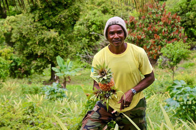 farmer Mr Leroy John, Grenada