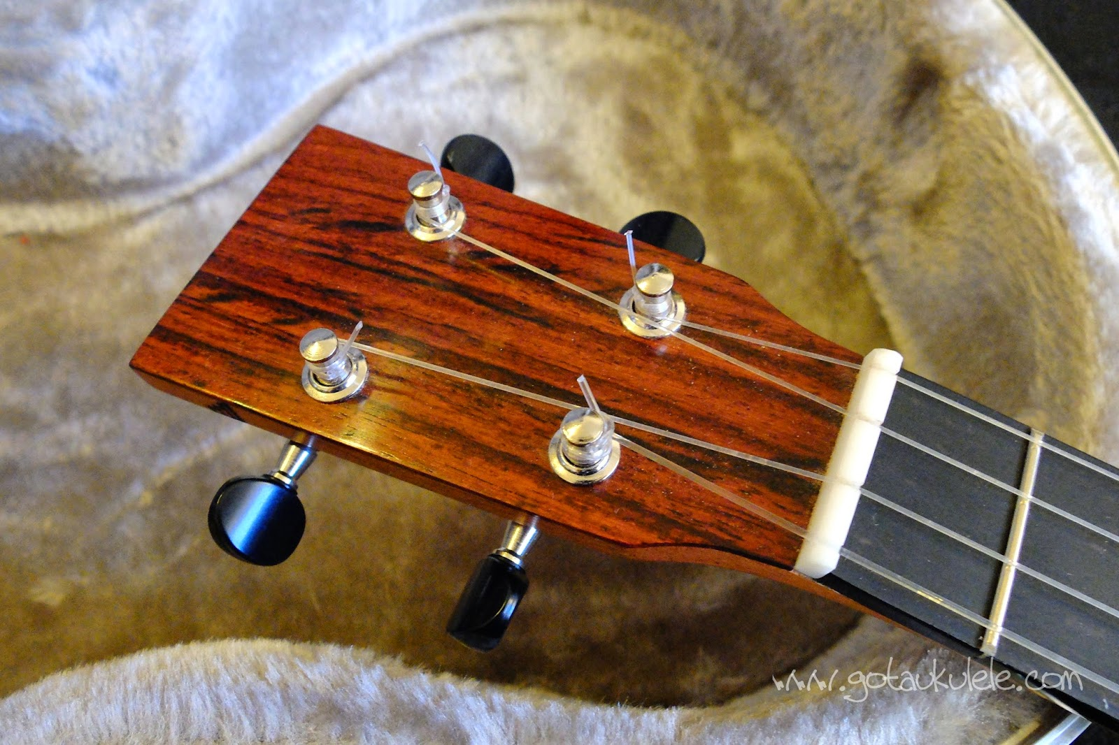Tinguitar custom build solid electro tenor headstock