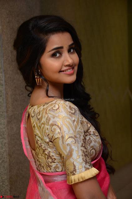Anupama Parameswaran in Saree ~  Exclusive 005.jpg