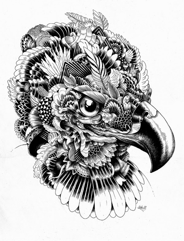 10-Iain-Macarthur-Precision-in-Surreal-Wildlife-Animals-Drawings-www-designstack-co