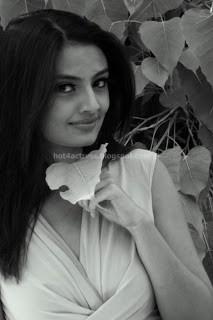 Nikitha narayana latest spicy photoshoot images