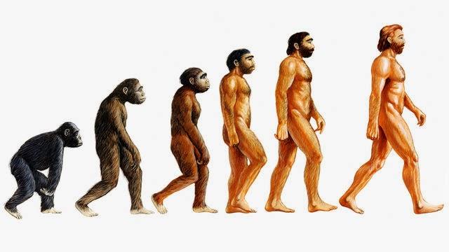 Teori Darwin Tentang Evolusi Manusia Tak Ilmiah