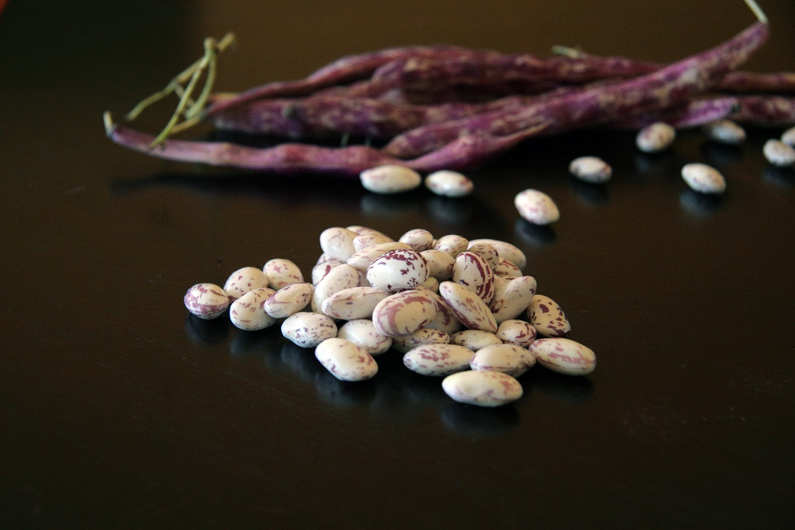 beans and chocolate sure when cooking up a savory bean stew your first ...