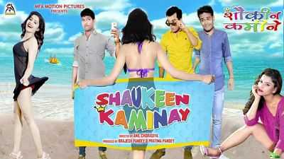 Shaukeen Kaminay (2016) 300mb Movies Download DVDscr