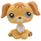 Littlest Pet Shop Singles Retriever (#368) Pet
