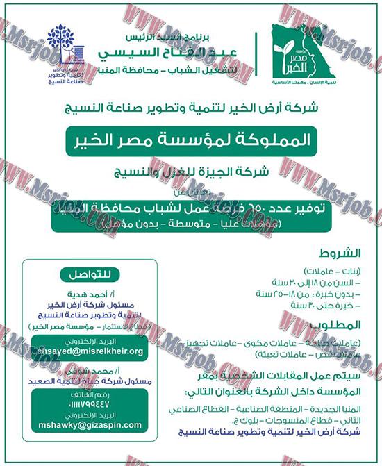 اعلان عن 650 فرصة عمل ببرنامج السيد الرئيس عبدالفتاح السيسي لتشغيل الشباب بمحافظة المنيا