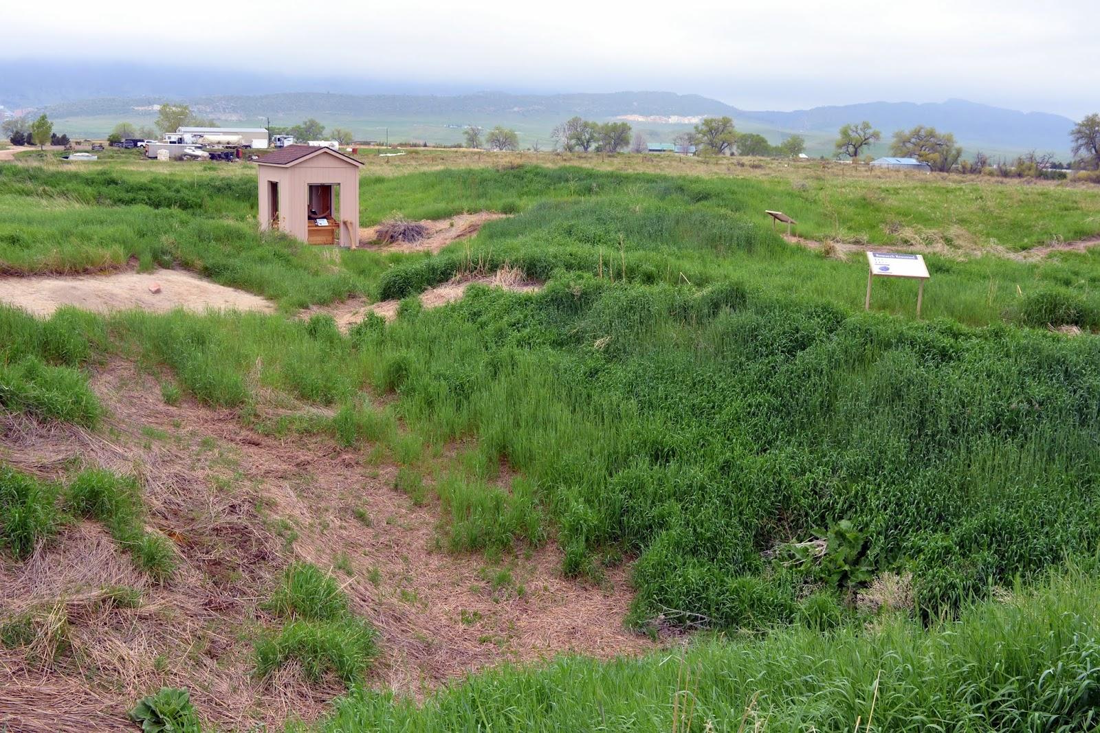 Mille Fiori Favoriti Lamb Springs Where The Mammoths Roamed