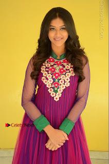 Actress Pooja Jhaveri Latest Stills in Purple Salwar Kameezt at Dwaraka Success Meet  0069.JPG