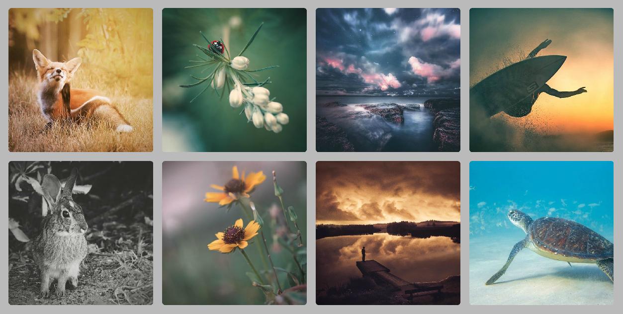 foto's favoriete instagrammers