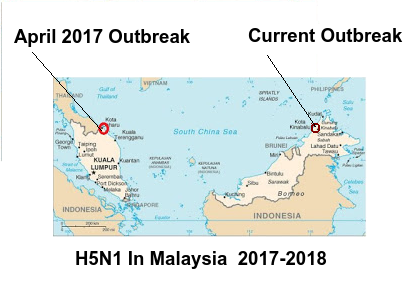Avian Flu Diary Oie Notification H5n1 In Malaysia