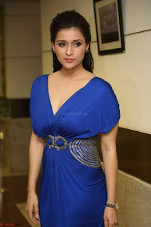 Mannara Chopra in Short Blue Dress at Rogue Movie Teaser Launch 1st March 2017 097.JPG