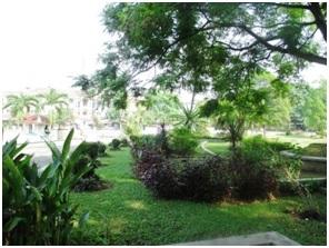 Taman-Refleksi-Kaki-dipenuhi-bunga-bunga-dan-pokok-kayu.
