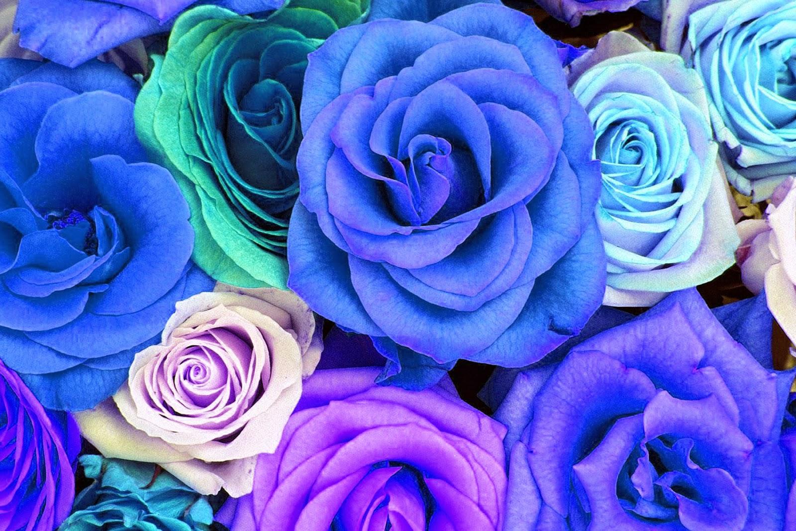 Doodlecraft: Watercolor Roses Wallpaper Freebies!