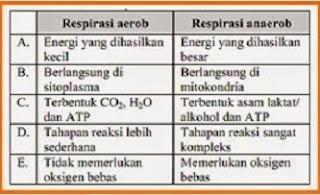perbedaan respirasi aerob dan anaerob dalam bentuk tabel,perbedaan respirasi aerob dan anaerob dengan tabel,perbedaan katabolisme dan anabolisme,perbedaan fotosintesis dan kemosintesis,