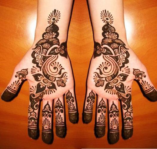 Amazing Mehndi Designs