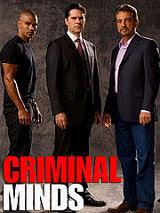 Mentes Criminales Temporada 2 (2006 - 2007) Online