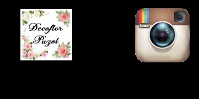 Floristería Decoflor Puzol en Instagram