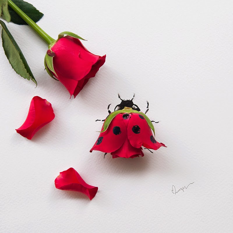 28-Lim-Zhi-Wei-Limzy-Paintings-using-Flower-Petals-www-designstack-co