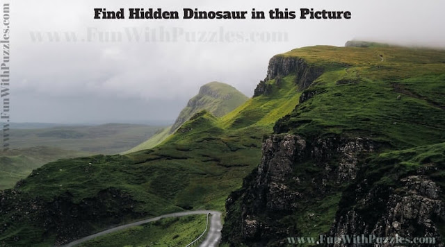 Picture Puzzle to find hidden Dinosaur