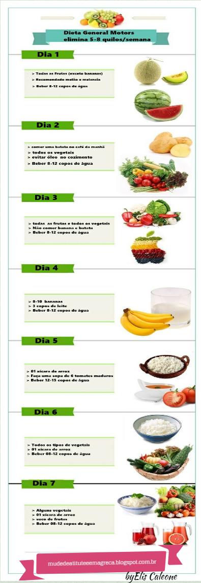 dieta gm dia 5
